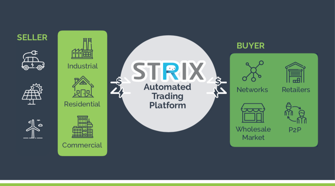 Diagram of how the Strix product works