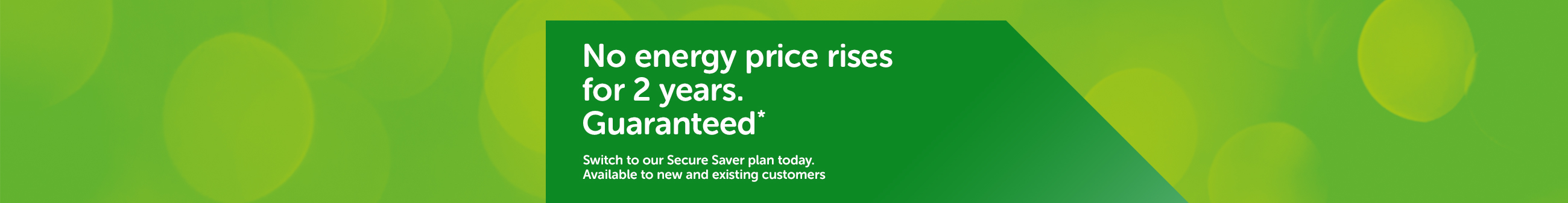 No energy price rises for 2 years. Guaranteed*