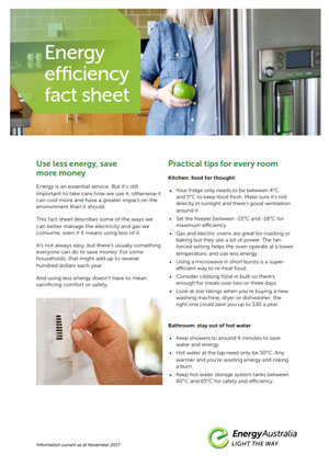 Fact sheet - energy_efficiency_thumb