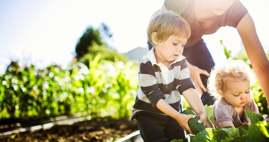 How to create a garden to help sell your home