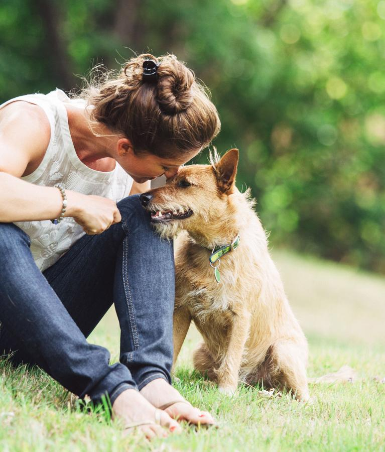 8 of the best gadgets for pet lovers