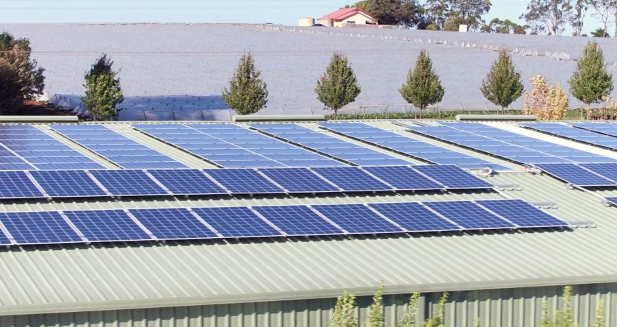 The Burleigh Flowers Farms Commercial Solar Power System
