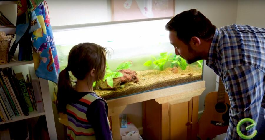 Father and daughter looking at fish tank