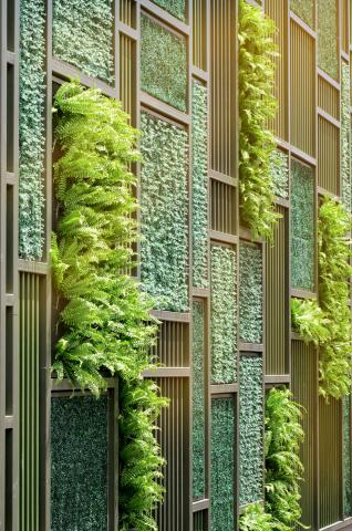 Pleasing Vertical Gardens The Trend That Can Lower Your Energy Bill  With Glamorous How And Why Can Vertical Gardens Save Money On Utilities With Astounding Neals Garden Centre Also Garden Blower And Vacuum In Addition Peppa Pig Gardening And How To Get Rid Of Moles In Garden As Well As Mexican Garden Additionally Garden Valley Roses From Energyaustraliacomau With   Glamorous Vertical Gardens The Trend That Can Lower Your Energy Bill  With Astounding How And Why Can Vertical Gardens Save Money On Utilities And Pleasing Neals Garden Centre Also Garden Blower And Vacuum In Addition Peppa Pig Gardening From Energyaustraliacomau